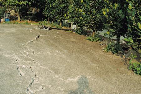 农村庭院地面设计图